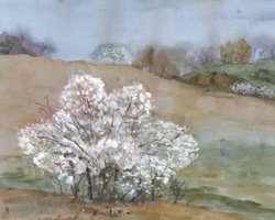 Весенний пейзаж акварелью