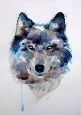Рисуем волка акварелью