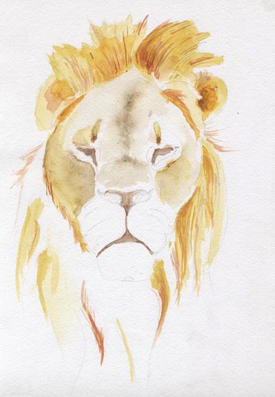 lion_08
