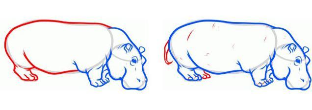 как нарисовать бегемота поэтапно