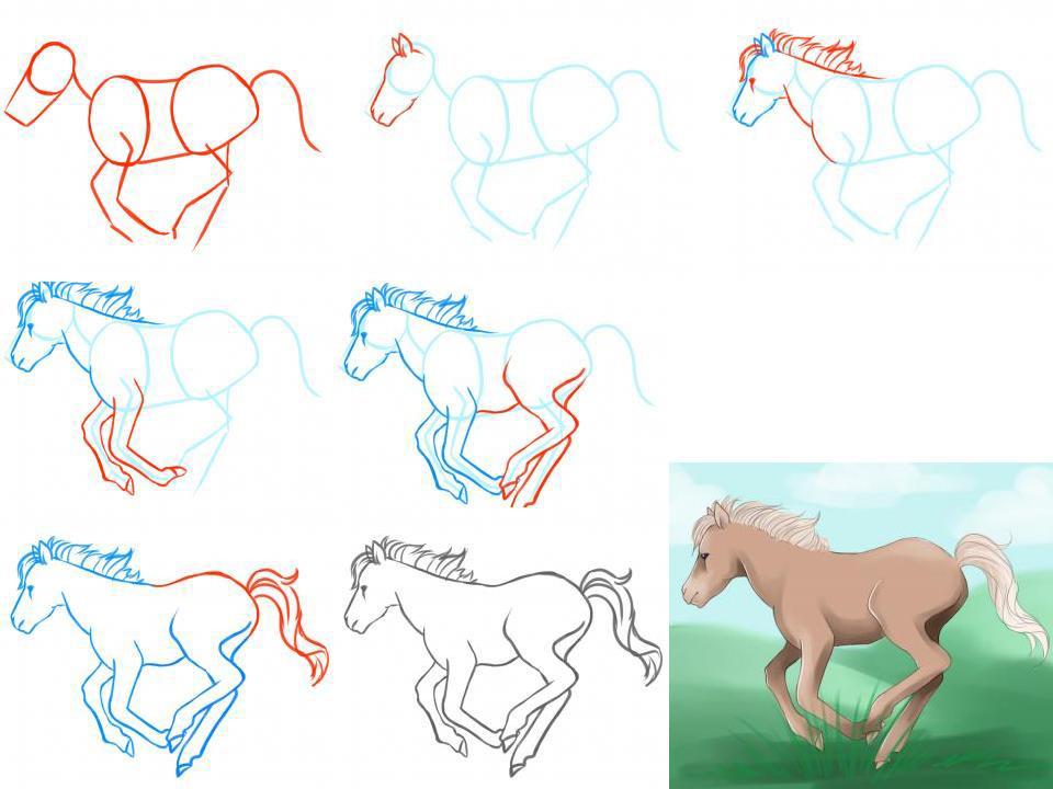 Как нарисовать лошадь поэтапно для детей 7 лет