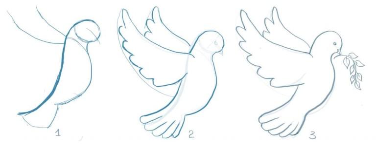 Нарисовать голубь мира поэтапно карандашом