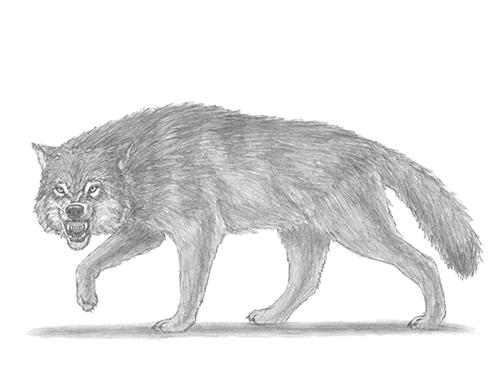 Стихи про охоту и охотников  Коркиlol