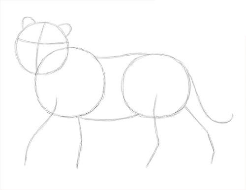 Рисунки карандашом голову тигра