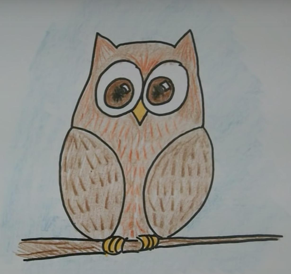 Сова фото для детей карандашом