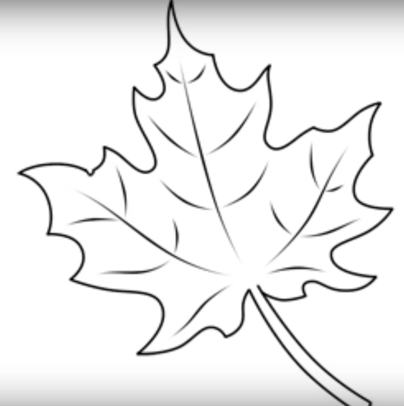 лист клёна картинка