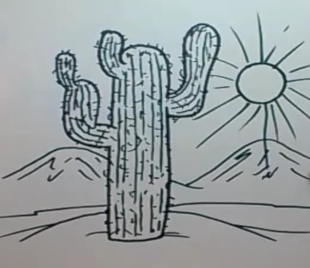 как рисовать кактус пошаговая инструкция