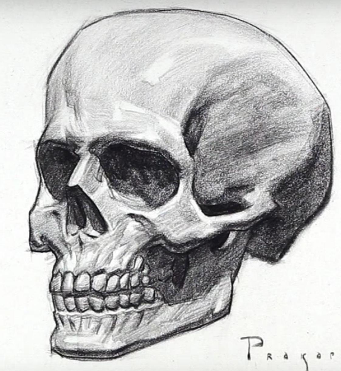 черепа рисунки картинки