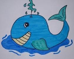 Как нарисовать кита рыбу поэтапно 83